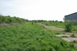 Zelena-dzungla-pred-hospodarskymi-budovami-farmy